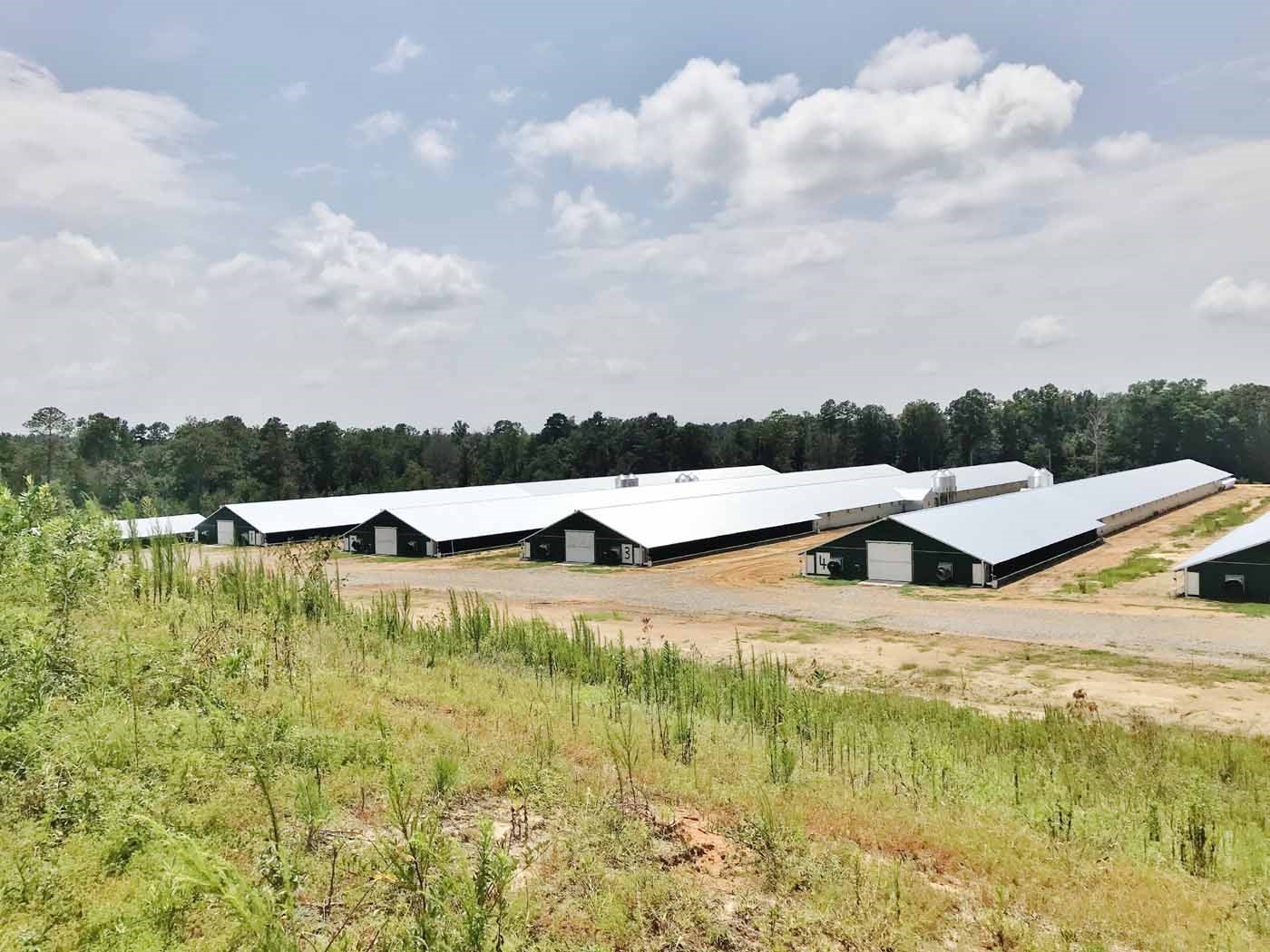 12 New Premium Pay Broiler Houses for Sale Jones County, MS