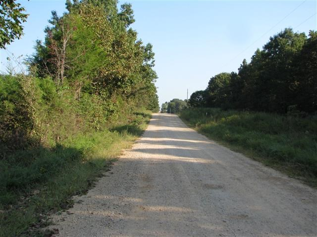 SOUTHERN MISSOURI LAND FOR SALE NEAR BIRCH TREE - 21 AC +/-