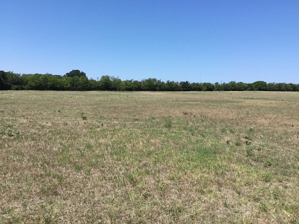 LAND FOR SALE IN WILLS POINT, TEXAS