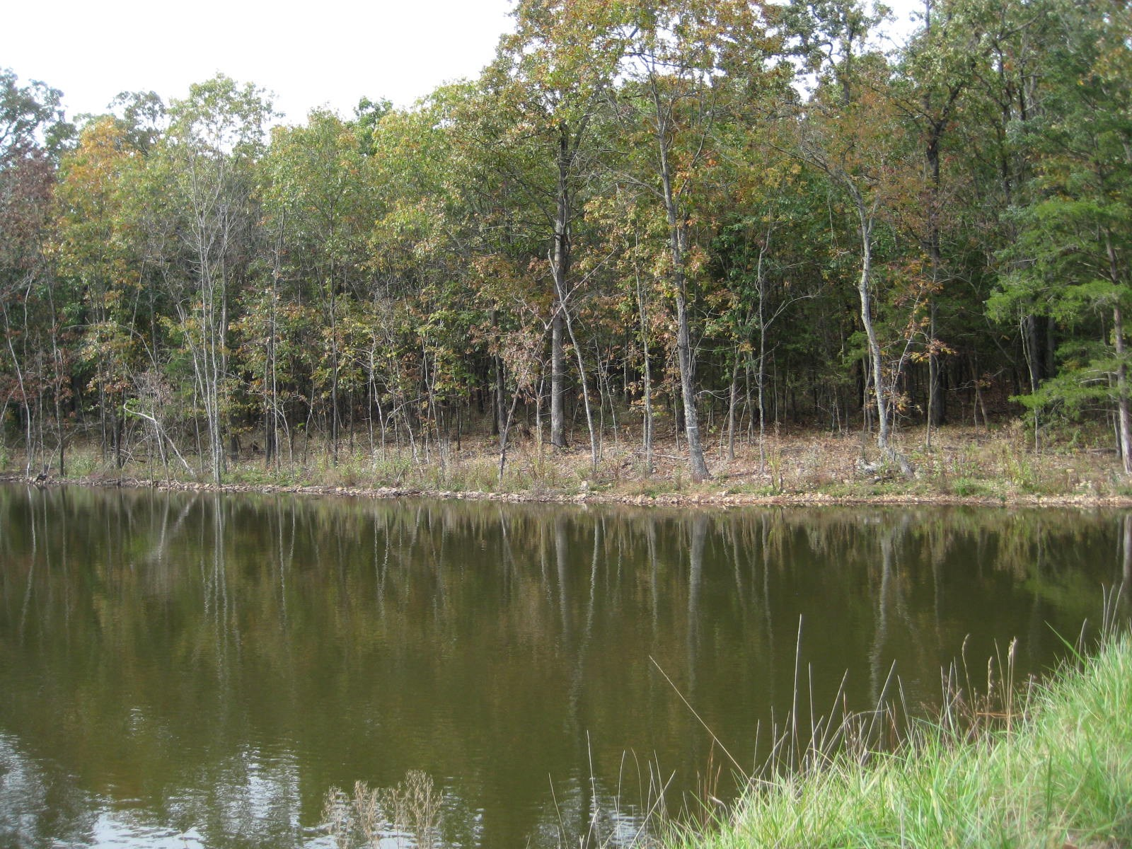 Morgan County MO Land For Sale! 47+/- Acres W/Private Lake!