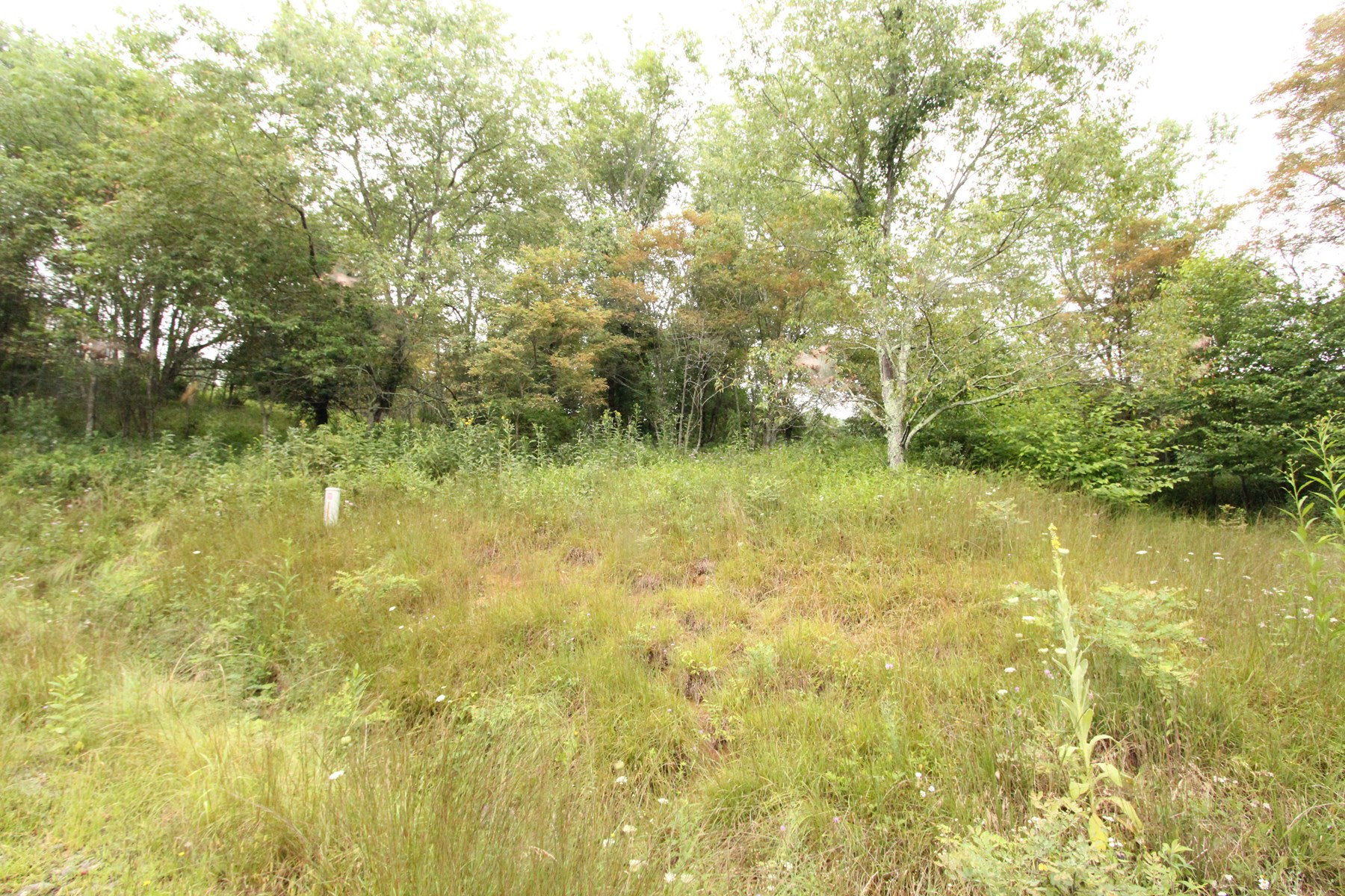 6.06 Acres in Gated Community in Blue Ridge Mountains