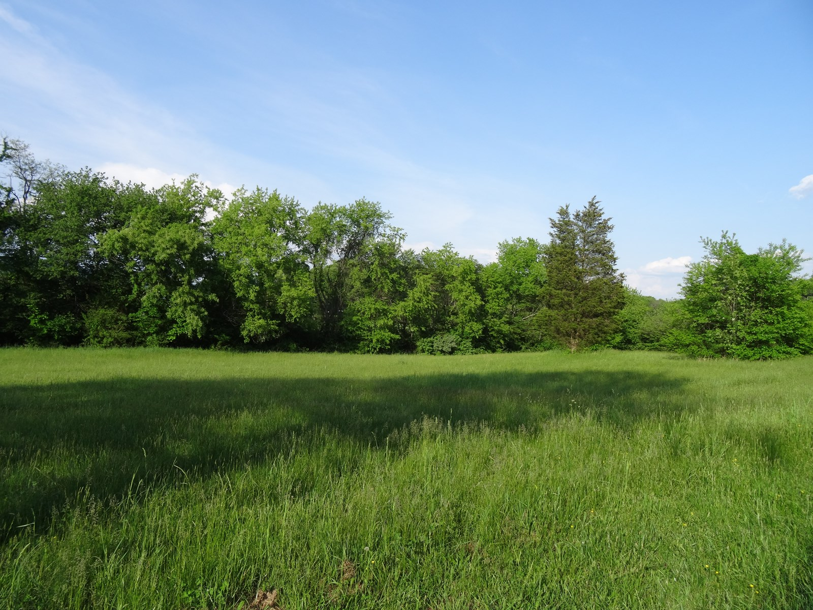 Looking to Build? Nice level lot conveniently located.