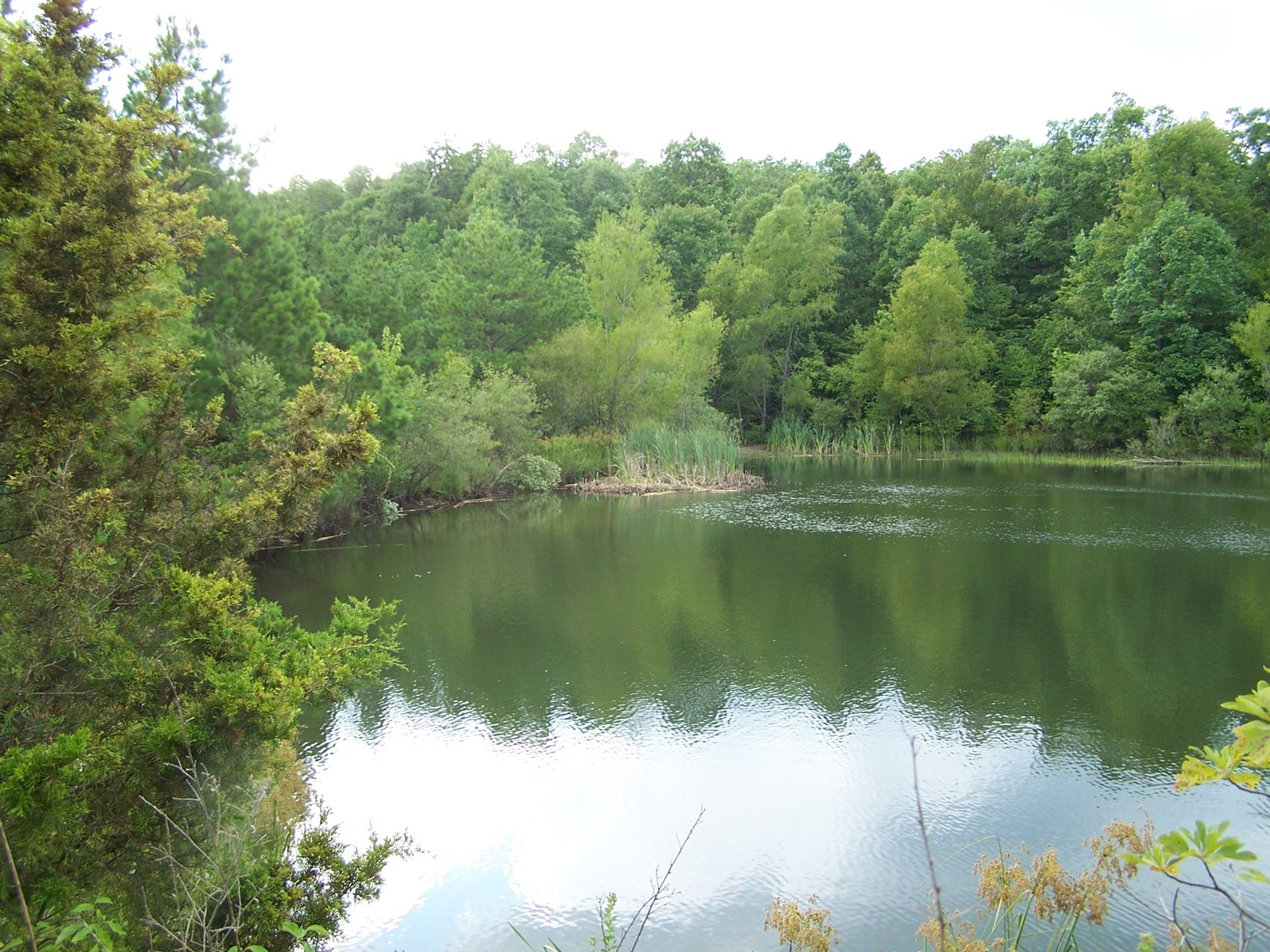 Searcy Co Arkansas Hunting/Recreational Land For Sale