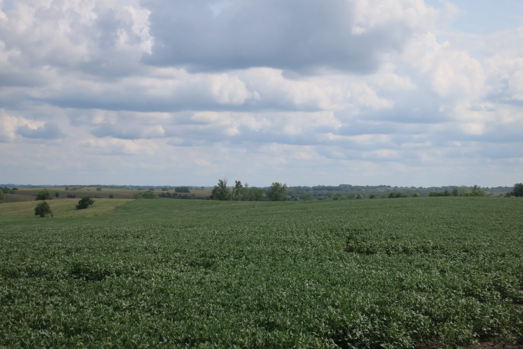 120 Acre Row Crop Farm in Northwest Missouri