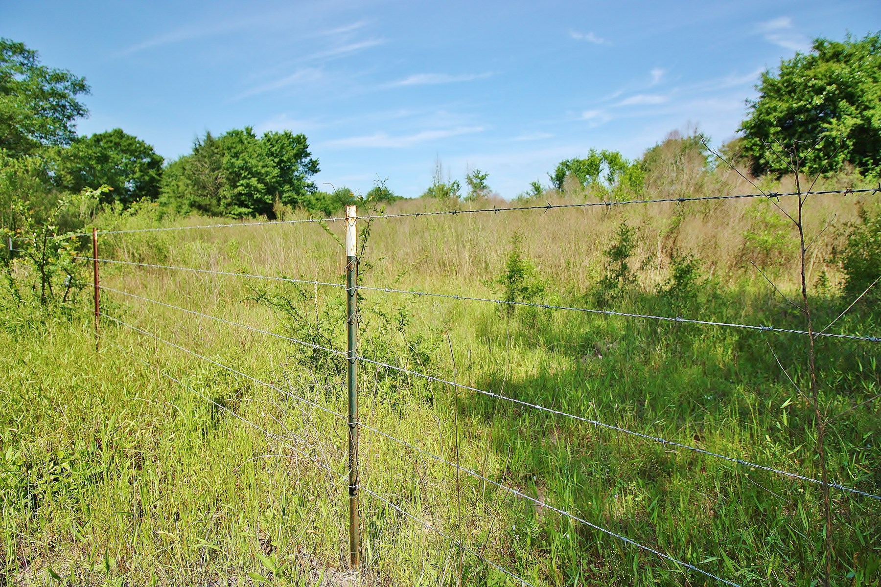 Land for Sale in Jewett, Leon County, Texas