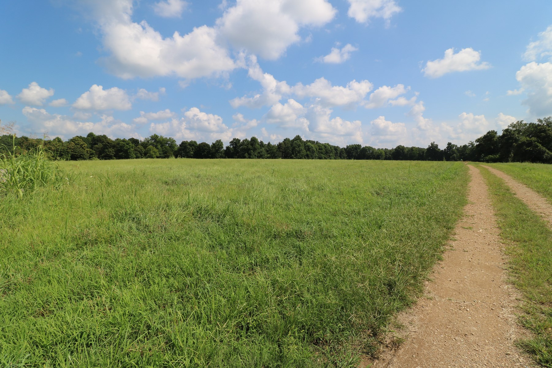 Investment Property 32 acres farm or subdivision Liberty KY