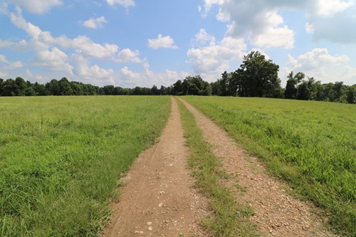 Farm for sale in Liberty KY - 32 AC