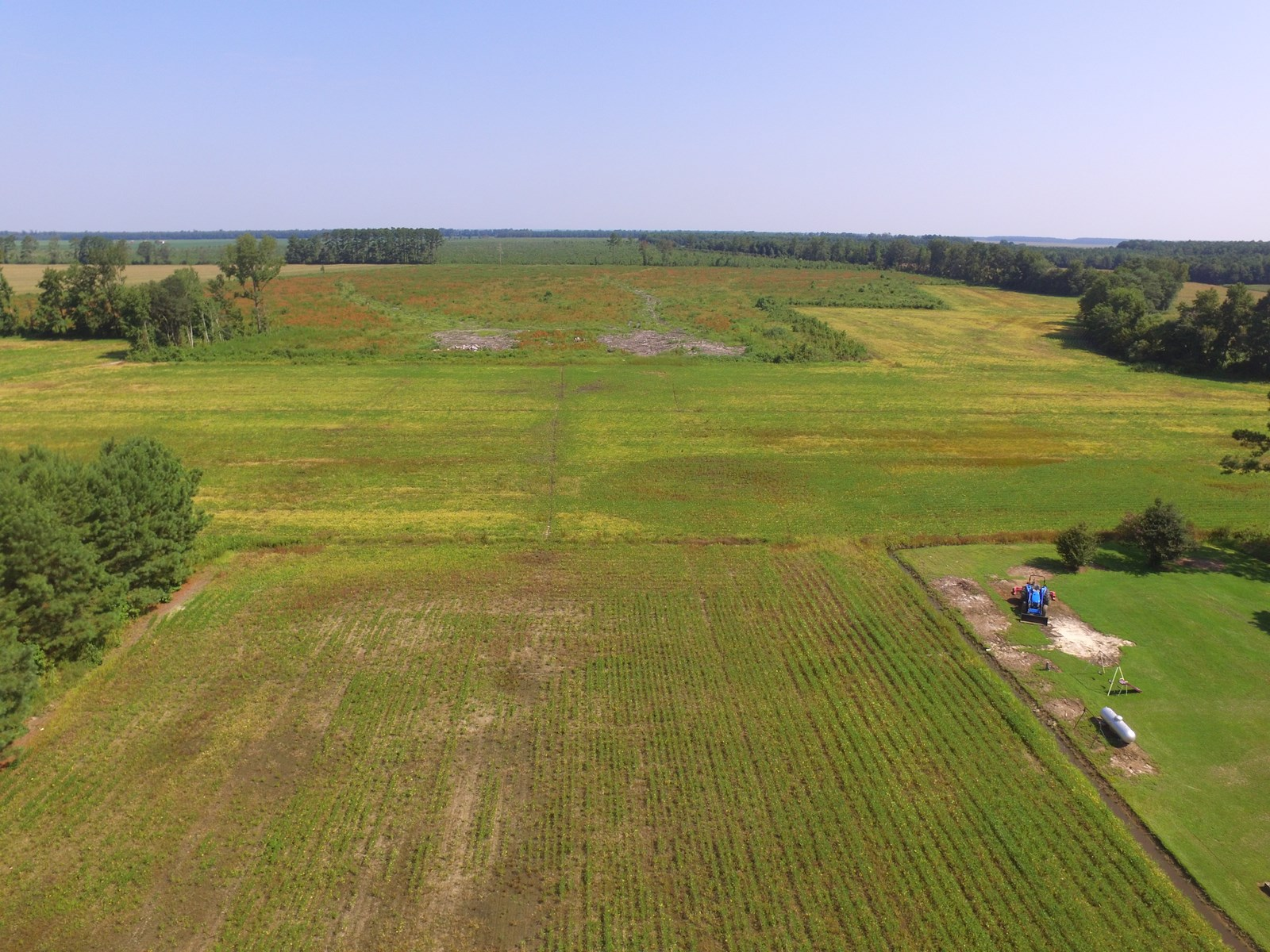 Mini Farm For Sale Beaufort Co. NC with Buildable Lot