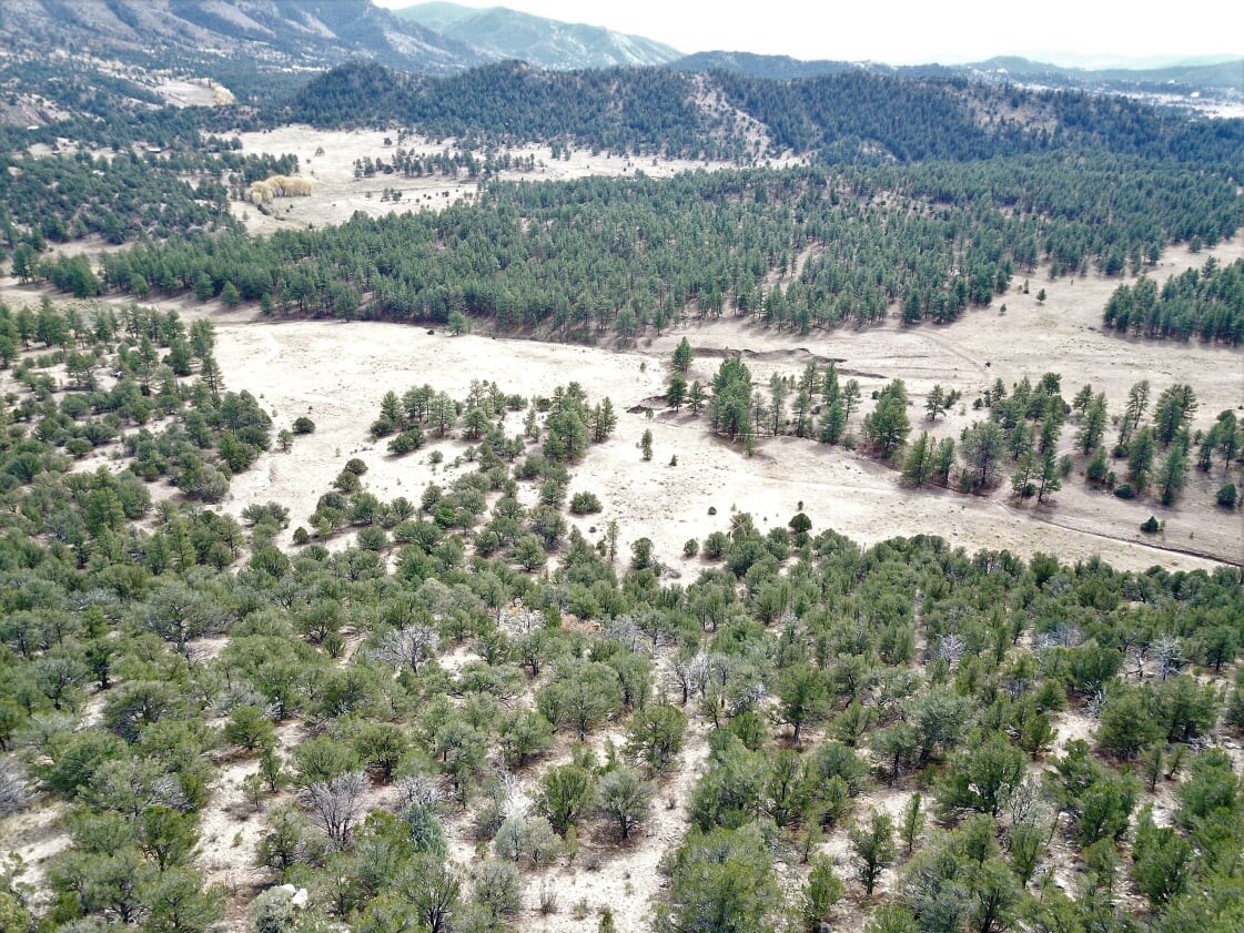 116 Acres in Westcliffe Colorado