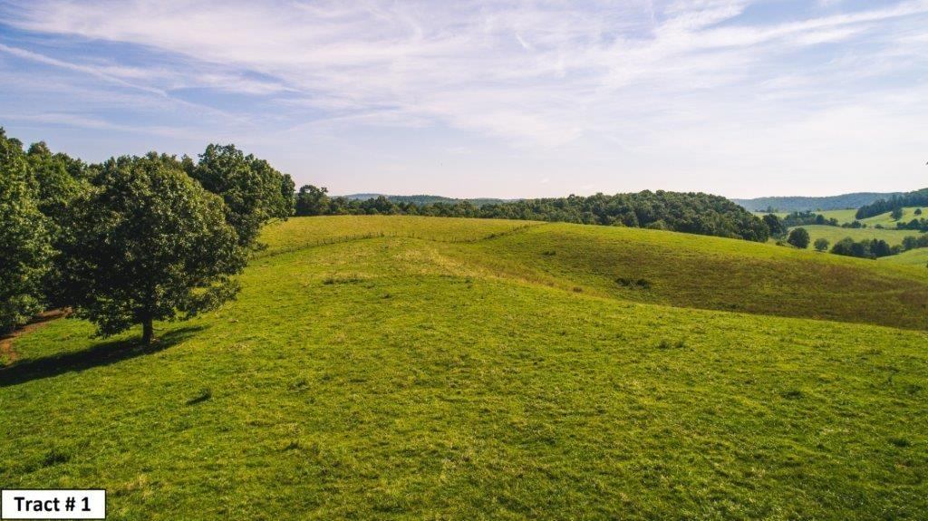 Farmland Auction in Floyd VA
