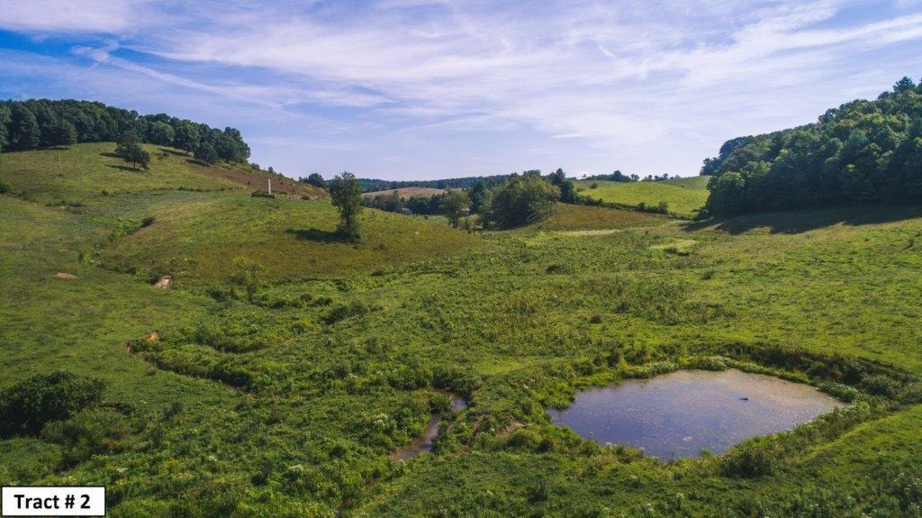 Prime Floyd VA Farmland for Sale at Auction