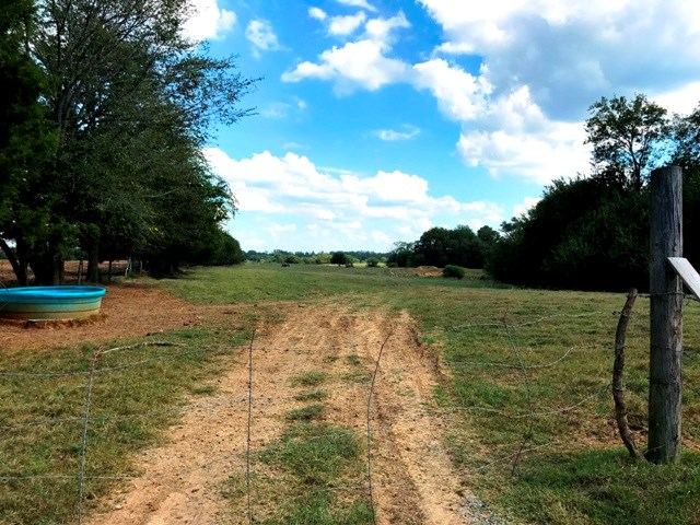 42.11 Acres in Oktibbeha County, MS