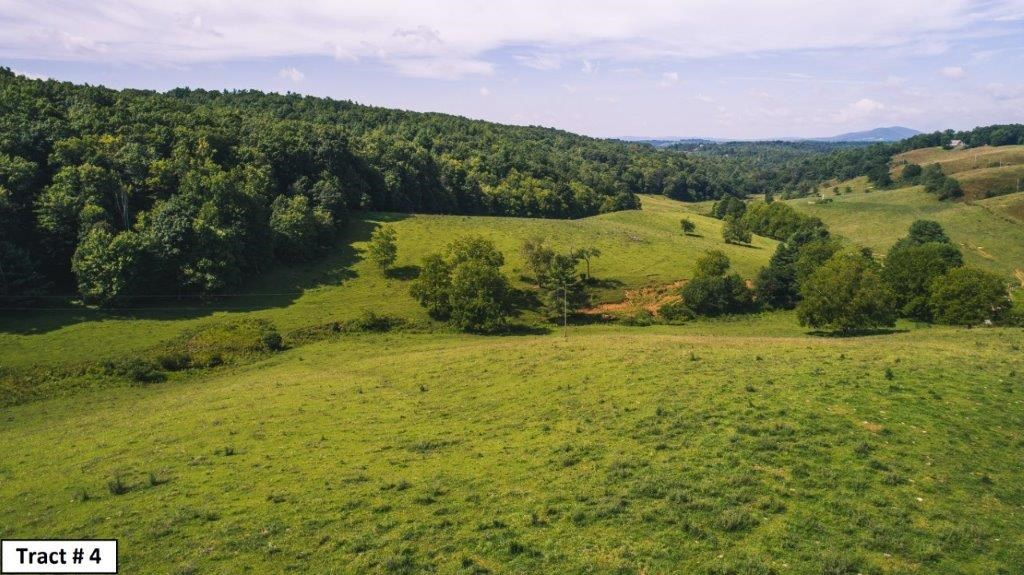 Farm For Sale in Floyd VA