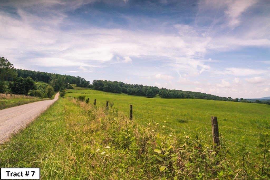 Farm Land, Recreational or Hunting Land in Floyd VA