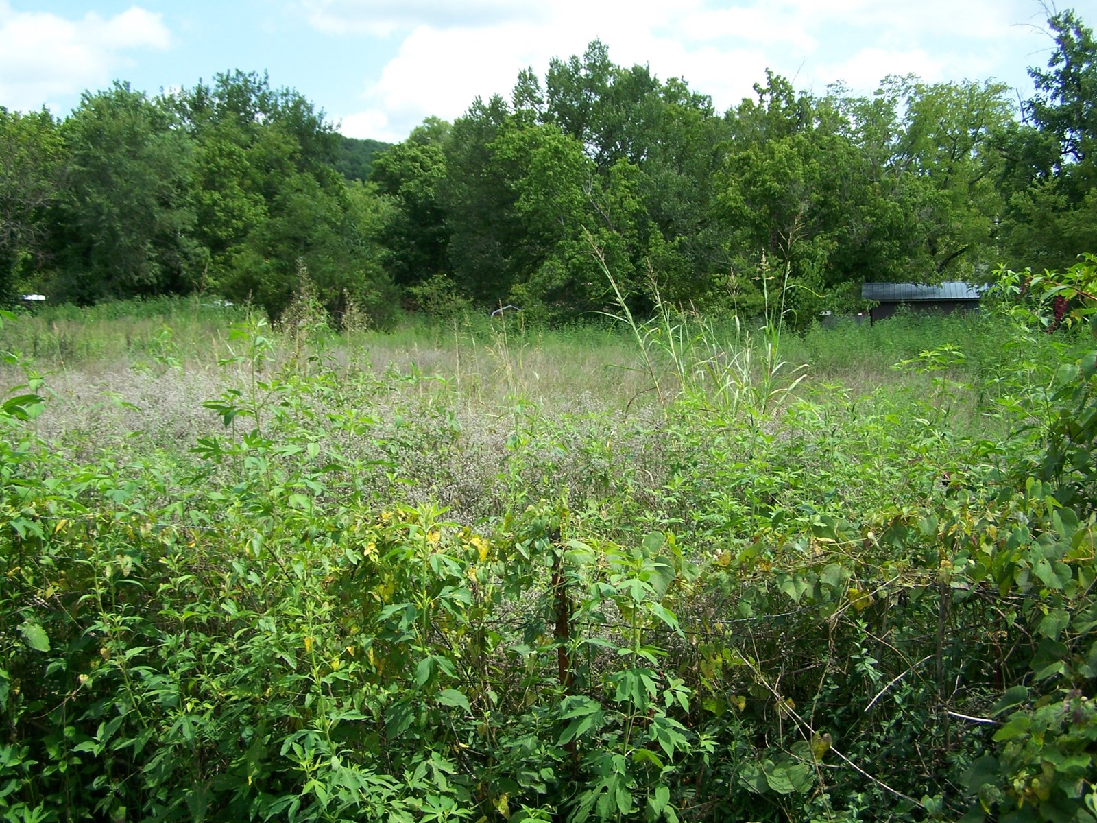 3 lots For Sale Inside City Limits of Leslie, Arkansas