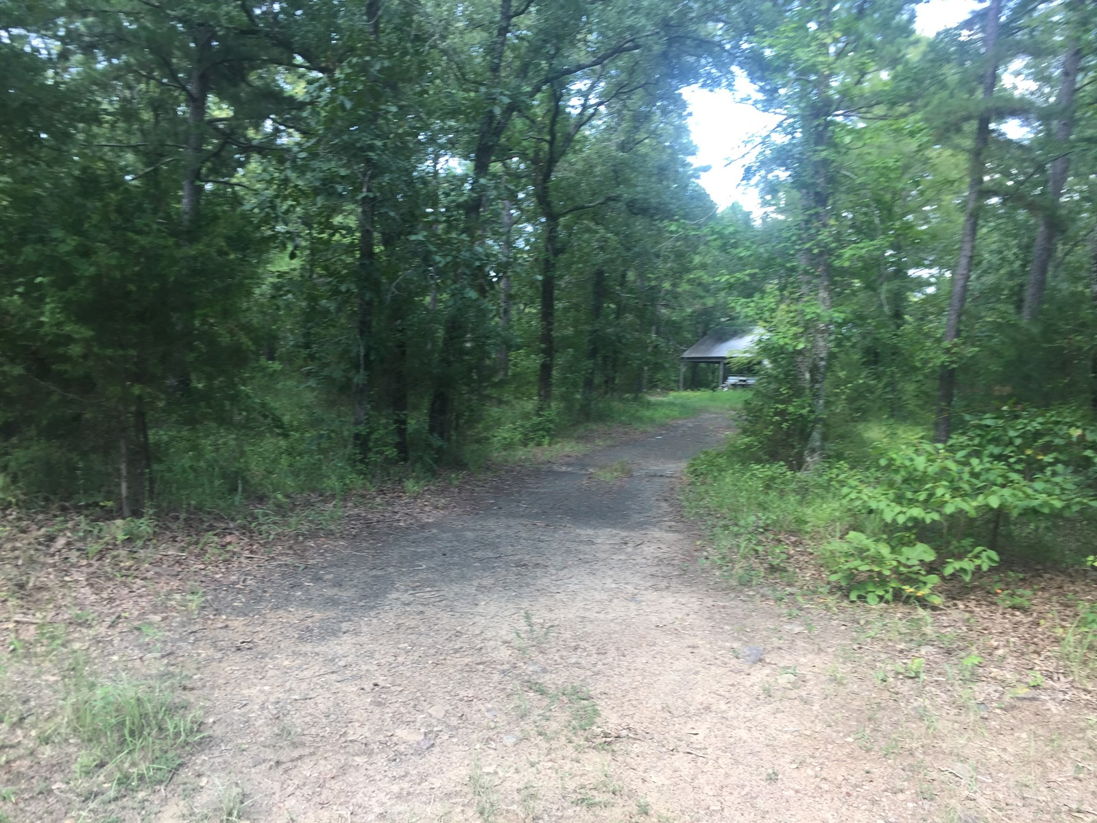 Land for Sale Finley,OK/Hunting Land for Sale UNDER CONTRACT