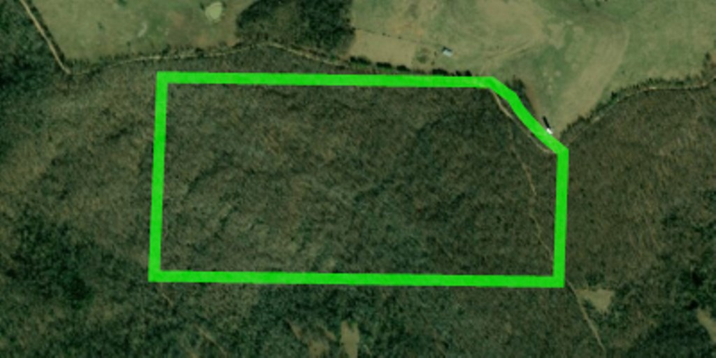 HUNTING LAND WITH BLUFFS FOR SALE NEAR KINGSTON, AR