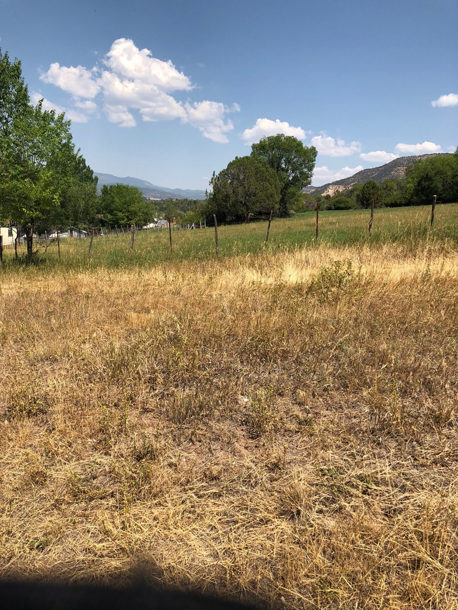 Corner lot in Collbran Colorado For Sale