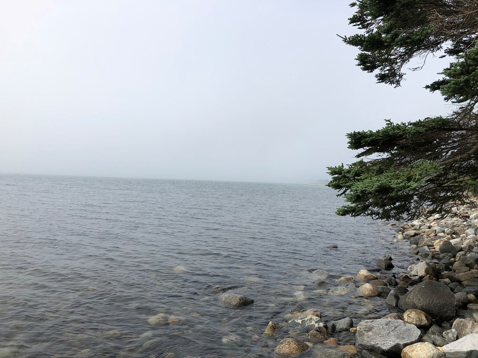 Deep Ocean Front Land For Sale | Cutler, Maine