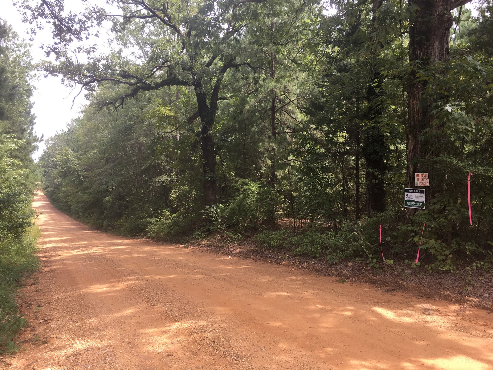 Recreational Land and Home Site Potential near Camden, AR