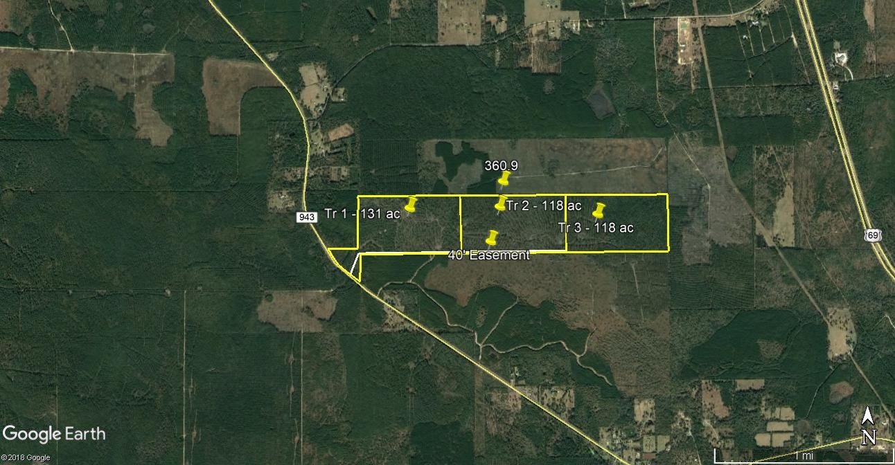 131 ACRES HEAVILY WOODED HUNTING RECREATION LAND FOR SALE