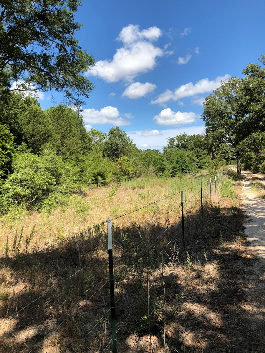 Land for Sale in Jewett, Leon County, TX