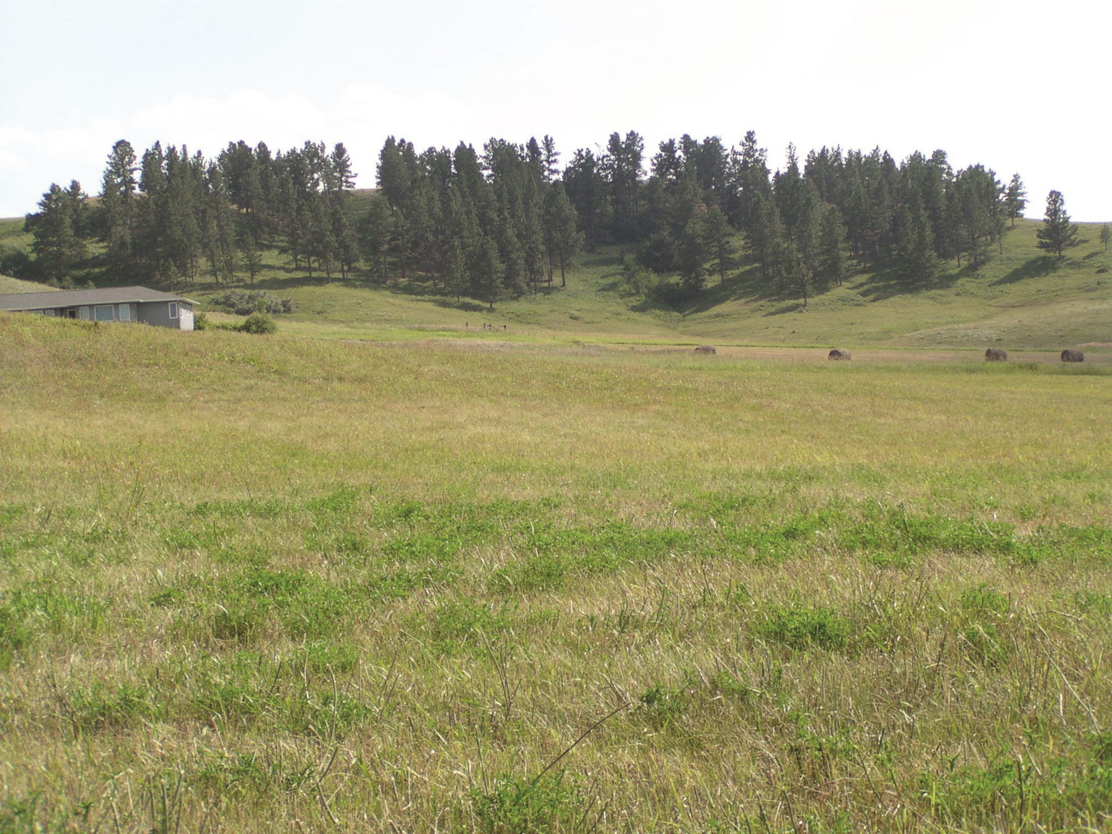 Central Montana Land For Sale