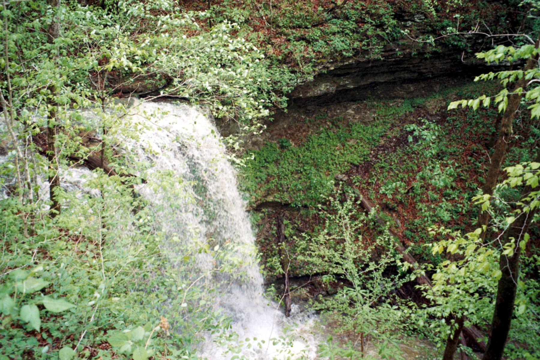 DEKALB CO. TN/SPARTA, TN/WATERFALLS/CREEKS/HUNTING/FISHING
