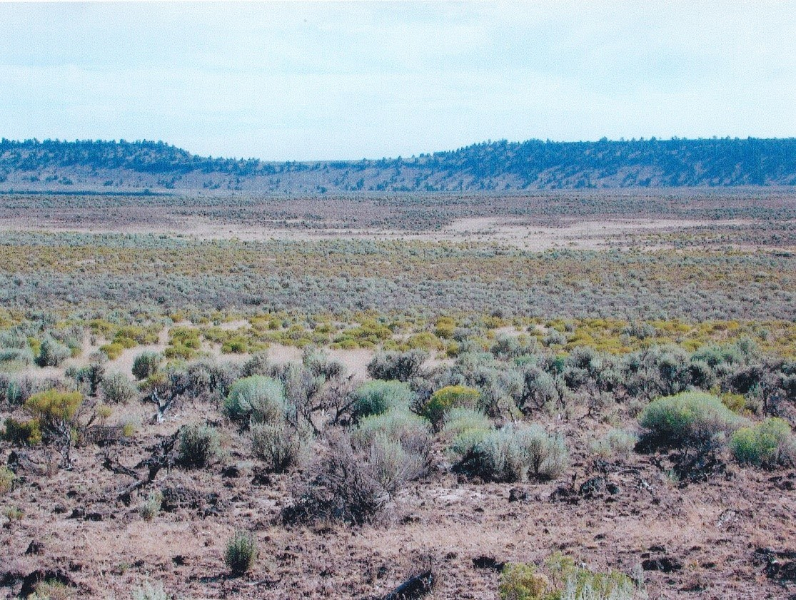 40 ACRES - RECREATIONAL PROPERTY NEAR RILEY OR