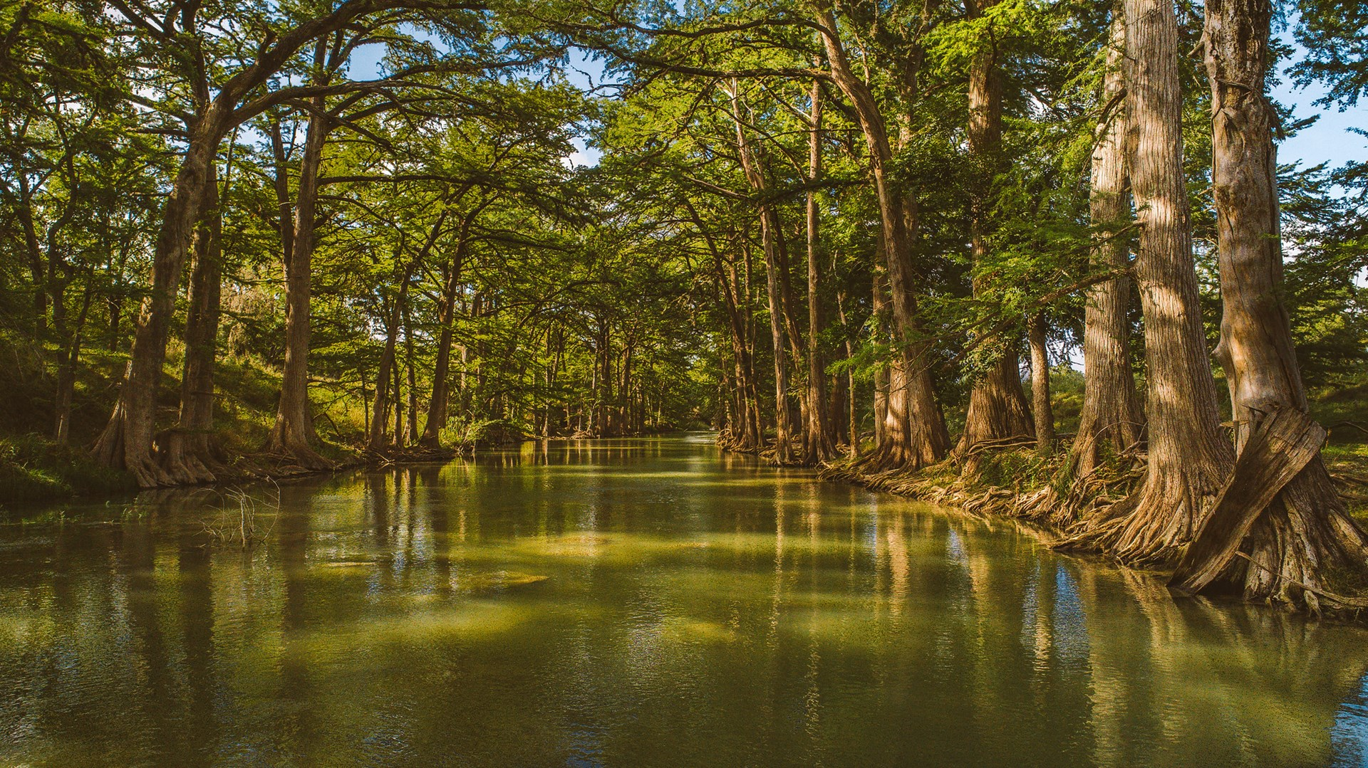 Ranch For Sale on the Guadalupe River in Kendall County, TX
