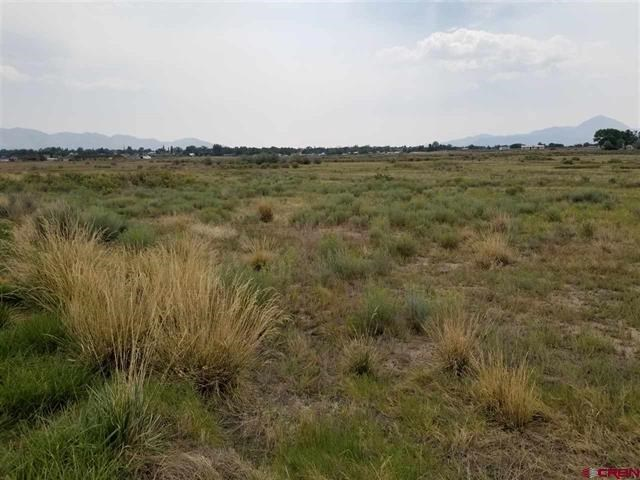 Vacant Land, No Covenants, almost 40acres!