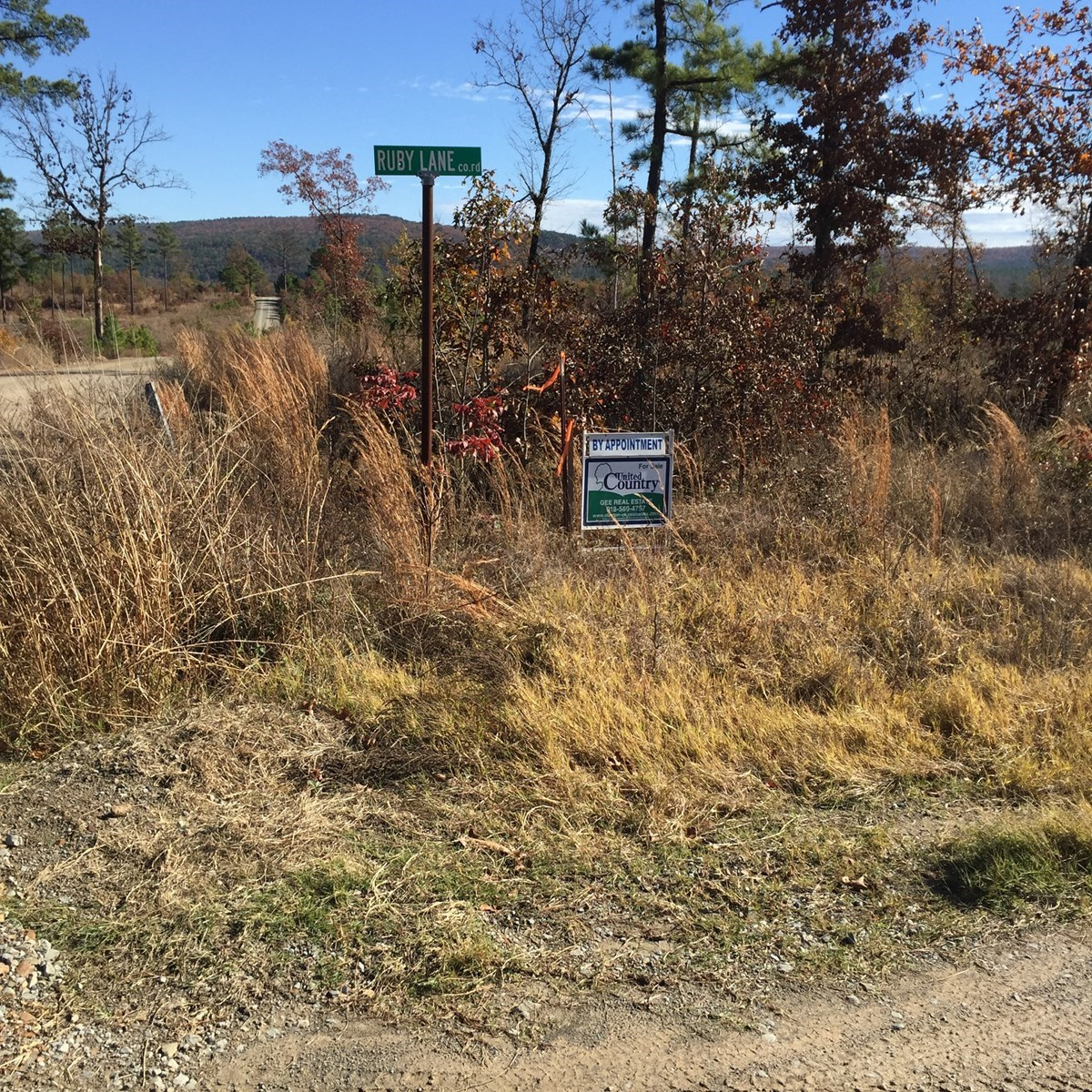 5 ACRE TRACT MOUNTAIN VIEW RECREATIONAL PROPERTY CLAYTON,OK