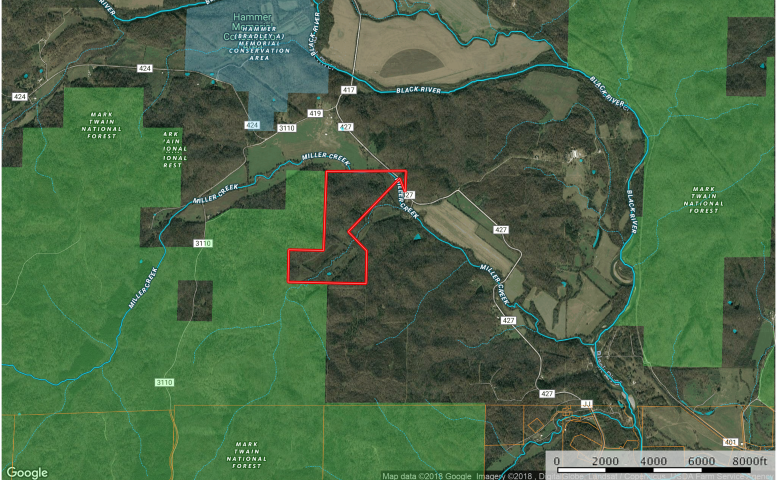 Missouri Timber Land For Sale  161 acres