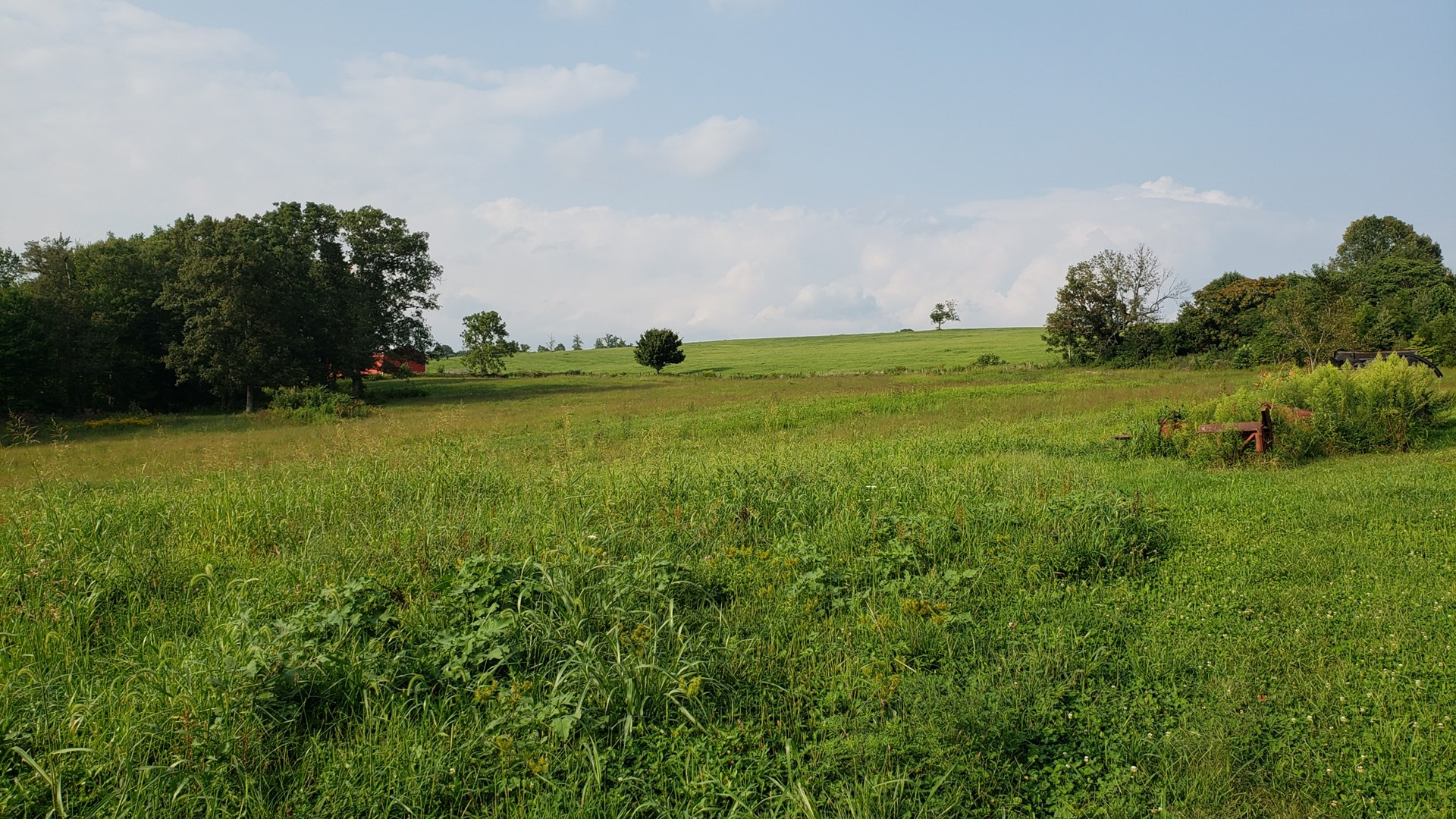 50 acre Farm for sale in Nancy Ky - Land for sale in KY