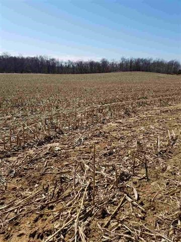 Vacant Farmland for Sale in Amherst Portage County WI