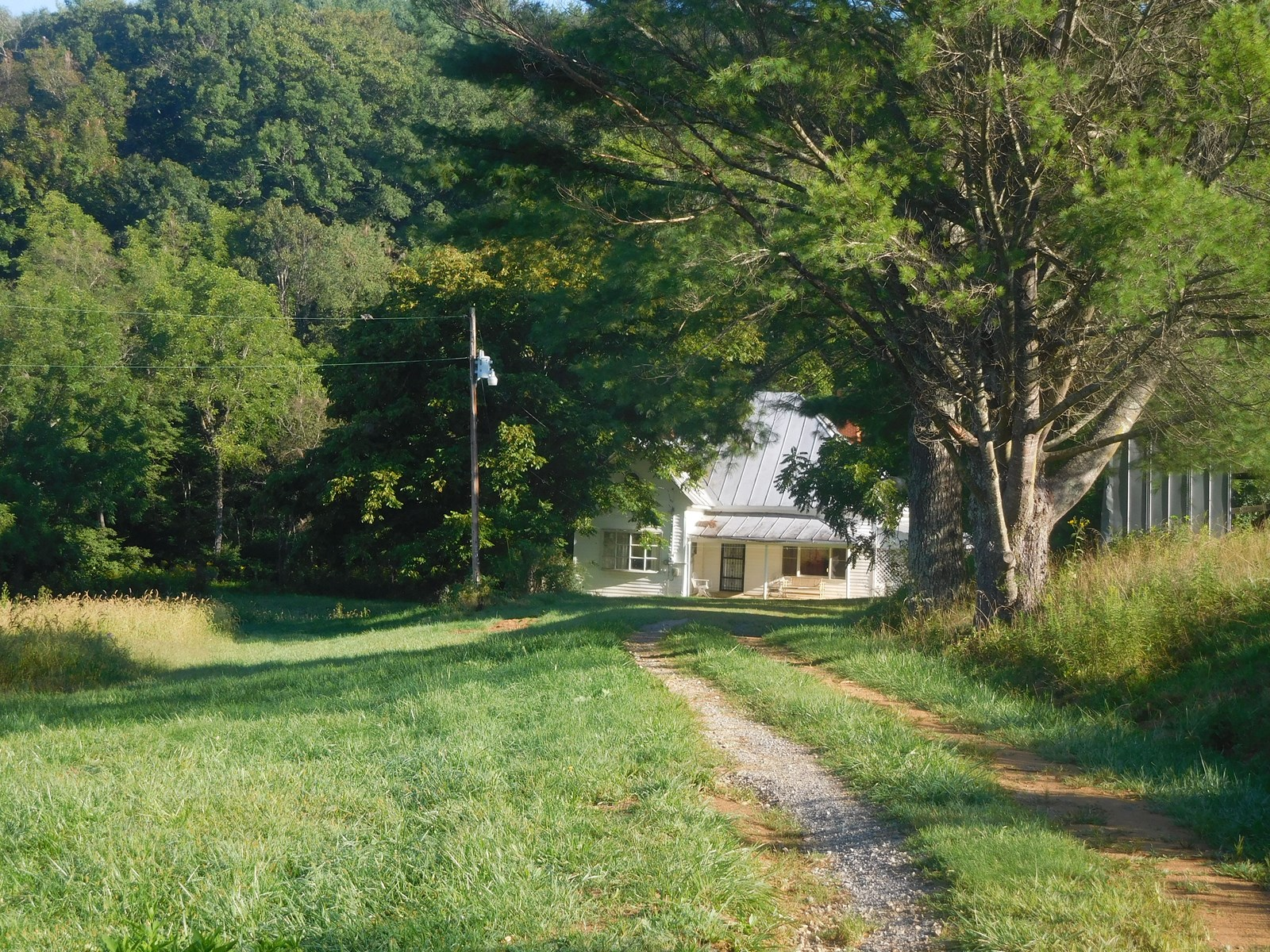 50 Acre +/- Farm for Sale in Alleghany County