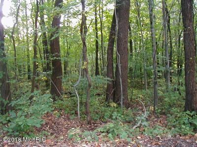 Nice Wooded Lot Just Minutes from Lake Michigan
