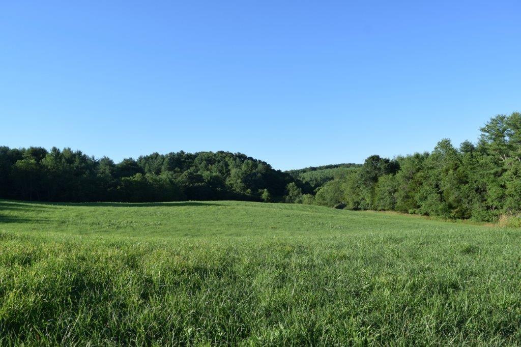 Farm Land for Sale, Floyd County VA