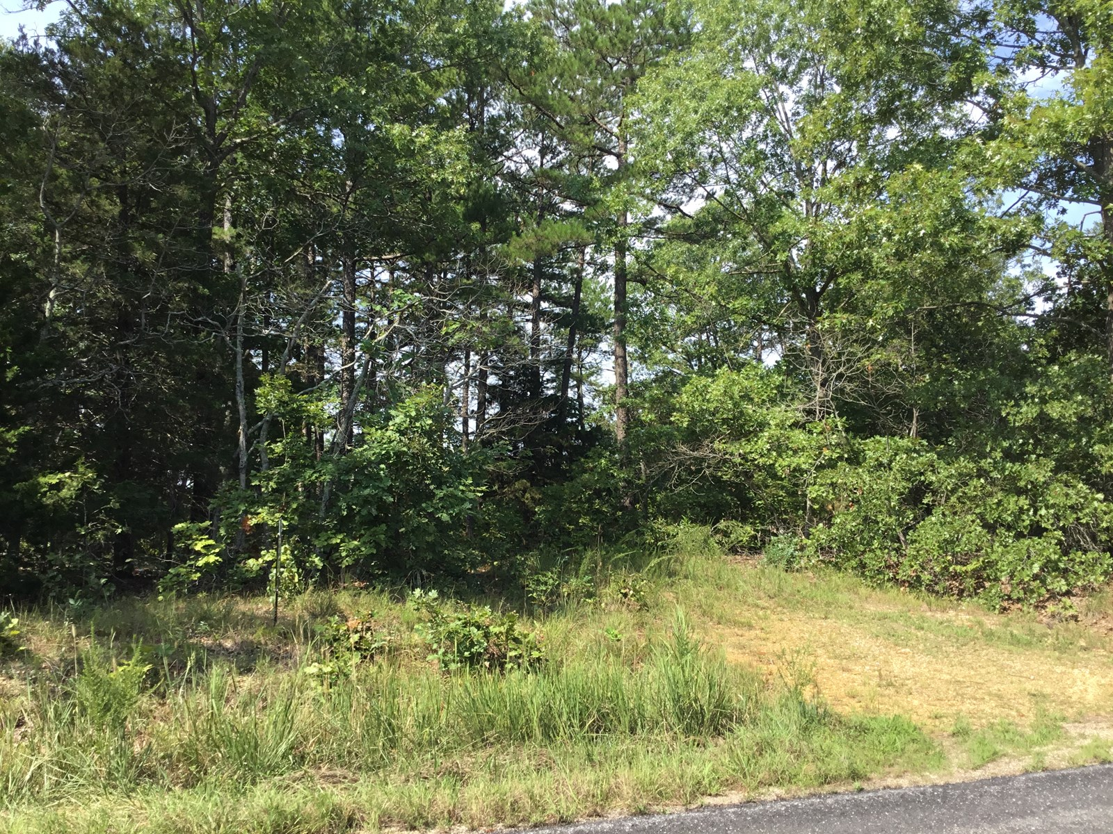 Land for Sale in the Ozarks - Wooded - Highway Frontage