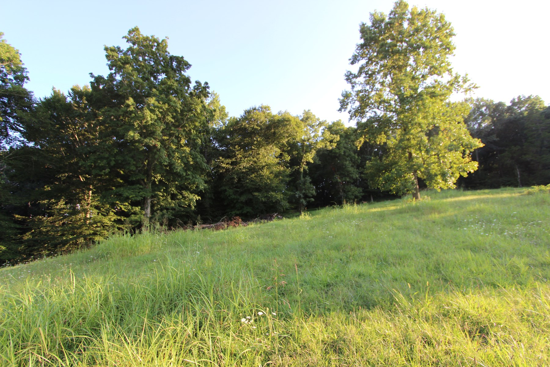 Lynnville, TN, Giles County Acreage For Sale