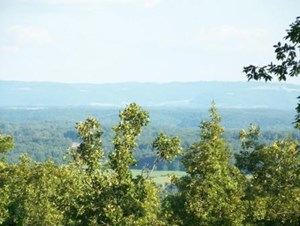 LAND FOR SALE OVER LOOKING BUFFALO NAT'L RIVER VALLEY