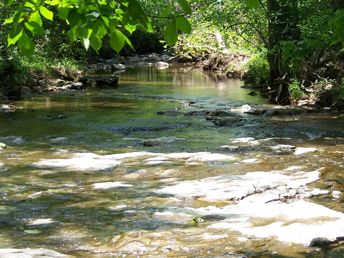 CREEK SIDE 12+ ACRE FOR SALE IN PYATT AR