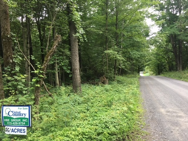 Wooded Land with Lots of Road Frontage