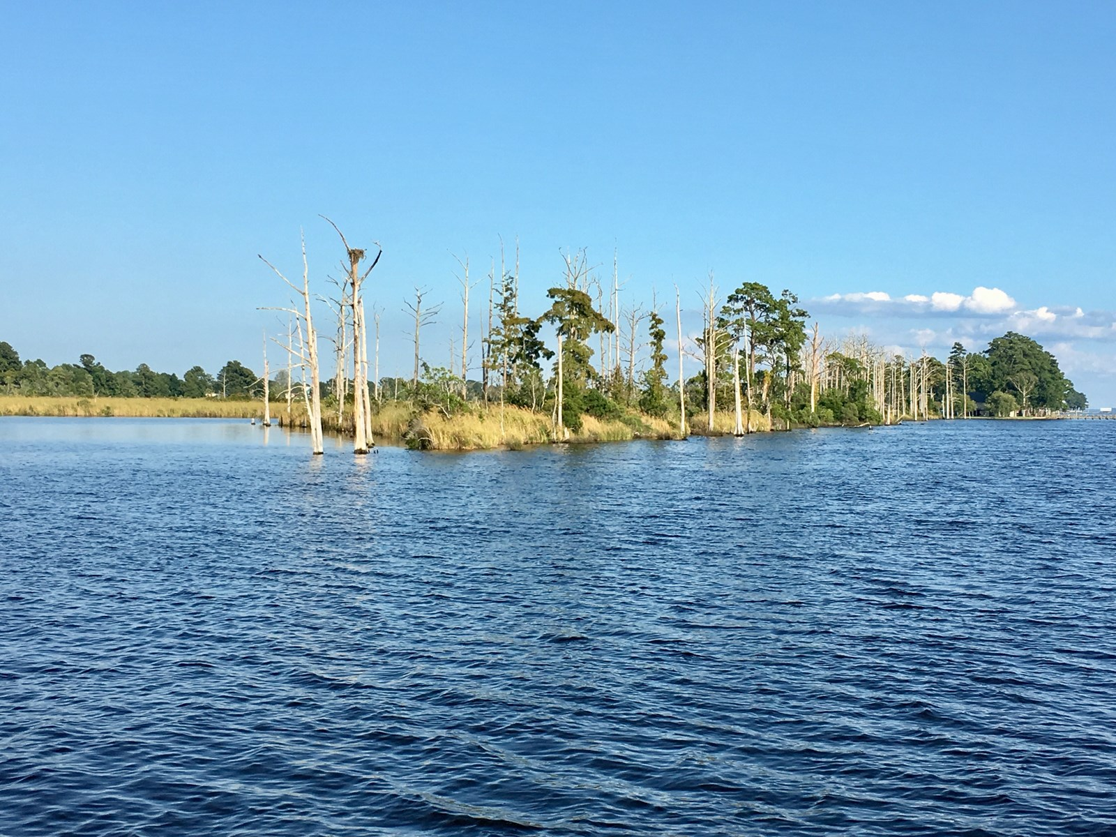 Duck Hunting Island For Sale In Chocowinity Bay, NC