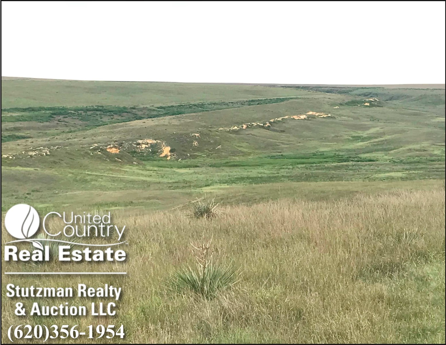 GOVE COUNTY, KS 640+/-  FARMLAND, GRASS & HUNTING PROPERTY