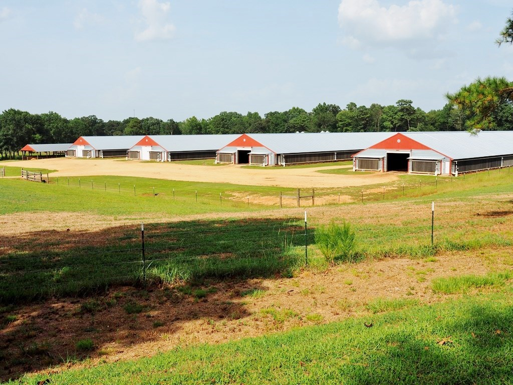 12 House Broiler Farm for Sale 114 Acres SW MS, Smithdale MS