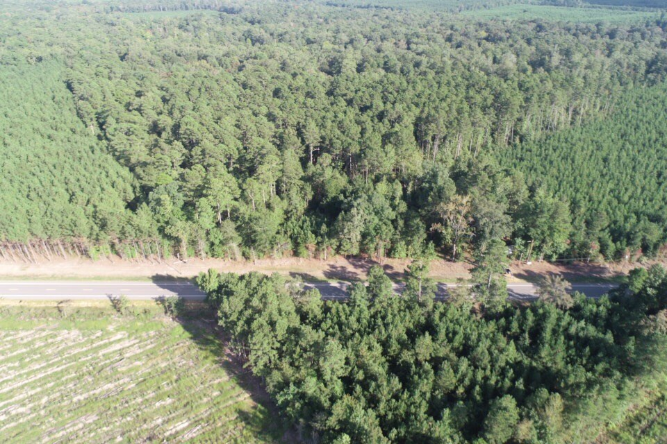 Timber Land with Camp Site for Sale near Fordyce, AR