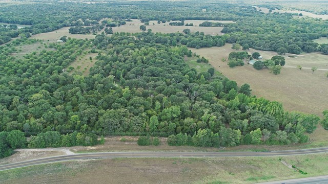 Acreage For Sale - Buffalo, TX - Leon County TX