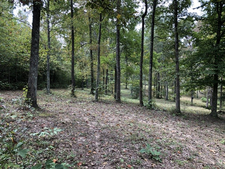 Wooded, Hart County, KY, Privacy, Wildlife, Great Location