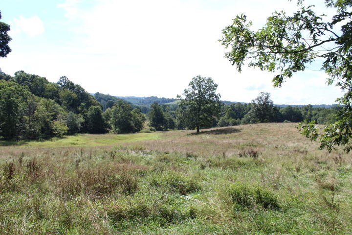20.5  ACRES OF LAND LOCATED IN PATRICK COUNTY, VIRGINIA